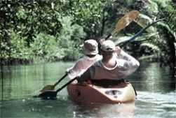 Kickapoo River canoeing through Wildcat Mountain